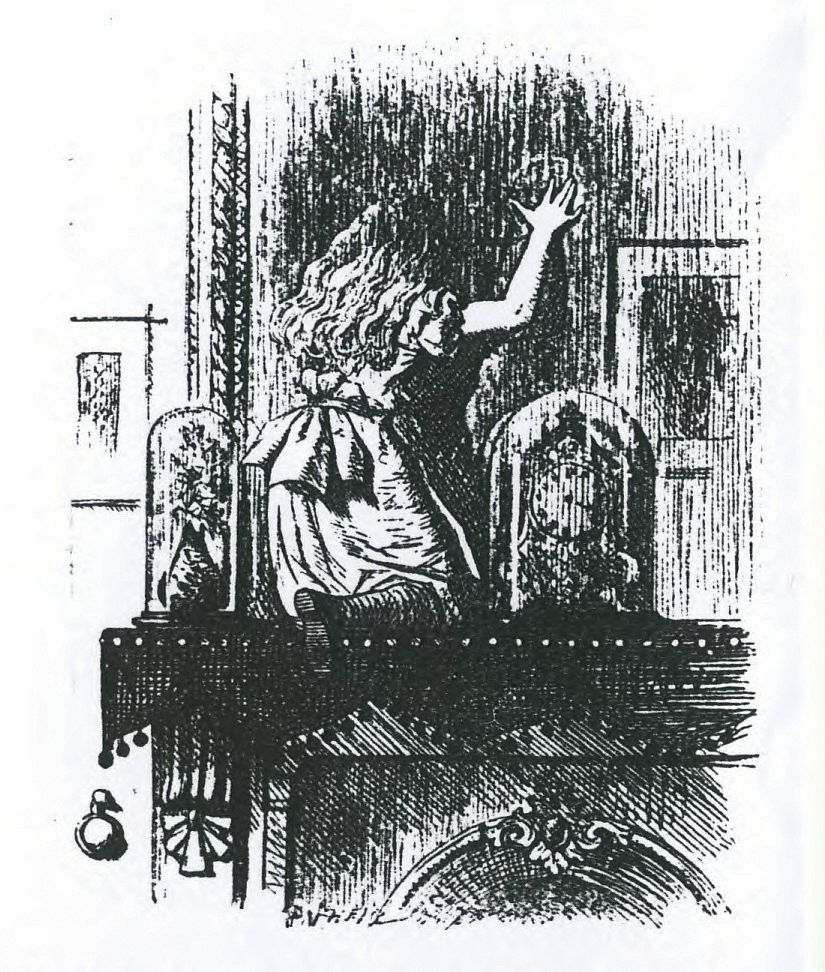 Illustration from Through the Looking Glass by Lewis Carroll. Ill.: John Tenniel